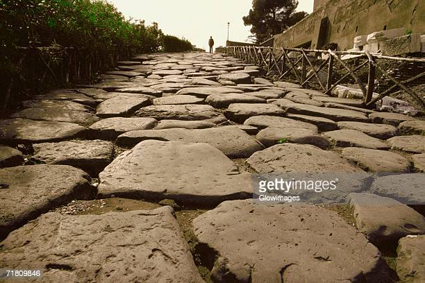 Close-up of cobblestone path, Appian Way, Rome, Italy