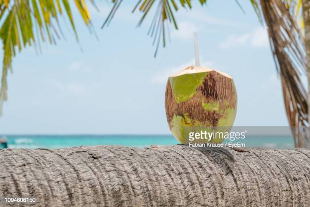 close-up of coconut cocktail on palm tree by sea against sky - coconut water stock pictures, royalty-free photos & images