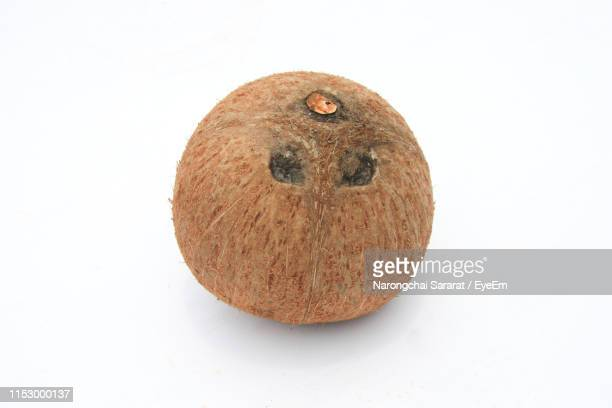 close-up of coconut over white background - coconut stock pictures, royalty-free photos & images