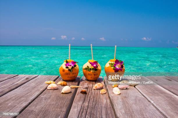 Close-Up Of Coconuts And Shells On Pier At Beach Against Sky