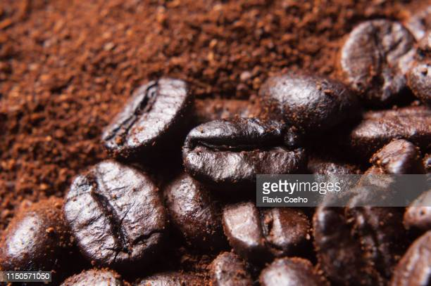close-up of coffee beans and coffee powder - café moulu photos et images de collection