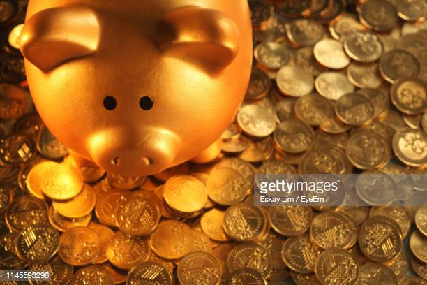 close-up of coins and piggy bank on blue background - bringing home the bacon stock photos and pictures