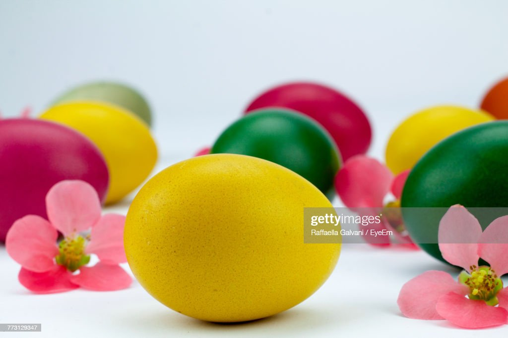 Close-Up Of Colorful Easter Eggs With Flowers Against White Background : Photo