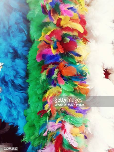 close-up of colorful feather boas - feather boa stock pictures, royalty-free photos & images