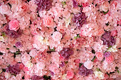 close-up of colorful roses backdrop wall.