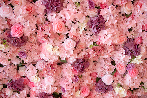 close-up of colorful roses backdrop wall. 1140756861