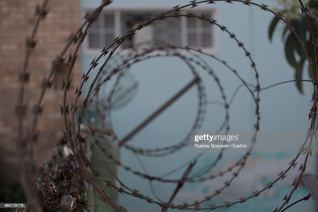 Closeup Of Concertina Wire Against Blurred Wall Stock Photo | Getty ...