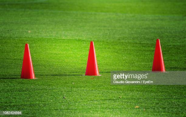 Close-Up Of Cones On Field