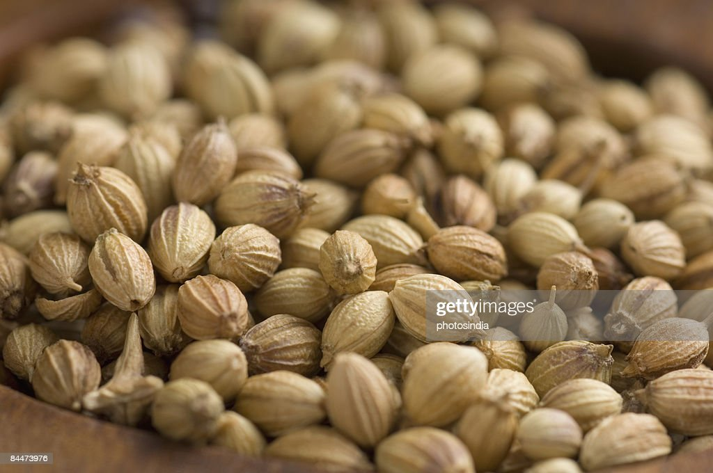 Close-up of coriander seeds in a spice container : Stock Photo