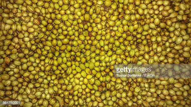Close-Up Of Coriander Seeds