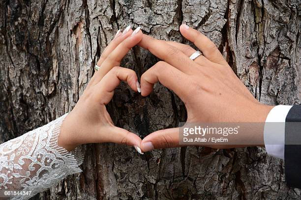 Close-Up Of Couple Making Heart Shape On Tree