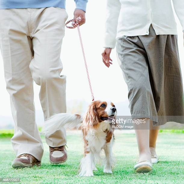 Close-up Of Couple Walking With Their Dog