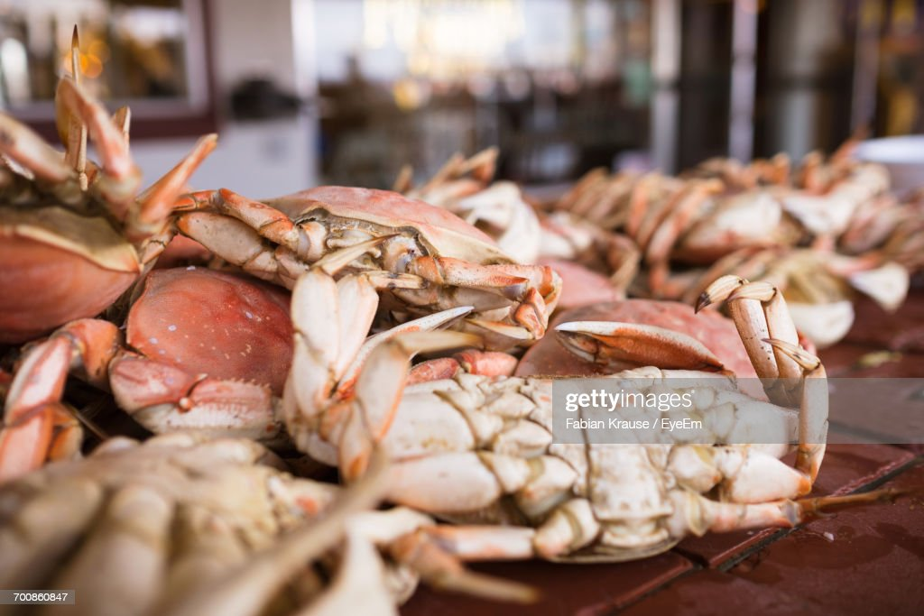 Close-Up Of Crabs At Market For Sale : Stock Photo