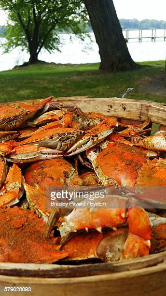 close-up of crabs in basket - pavard stock pictures, royalty-free photos & images
