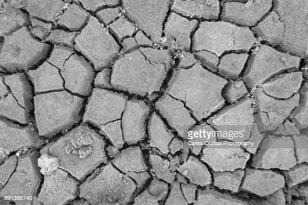 close-up of cracked land during drought in spain - leon boden stock-fotos und bilder