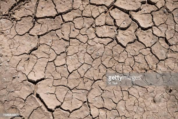 close-up of cracked land - trockenlandschaft stock-fotos und bilder