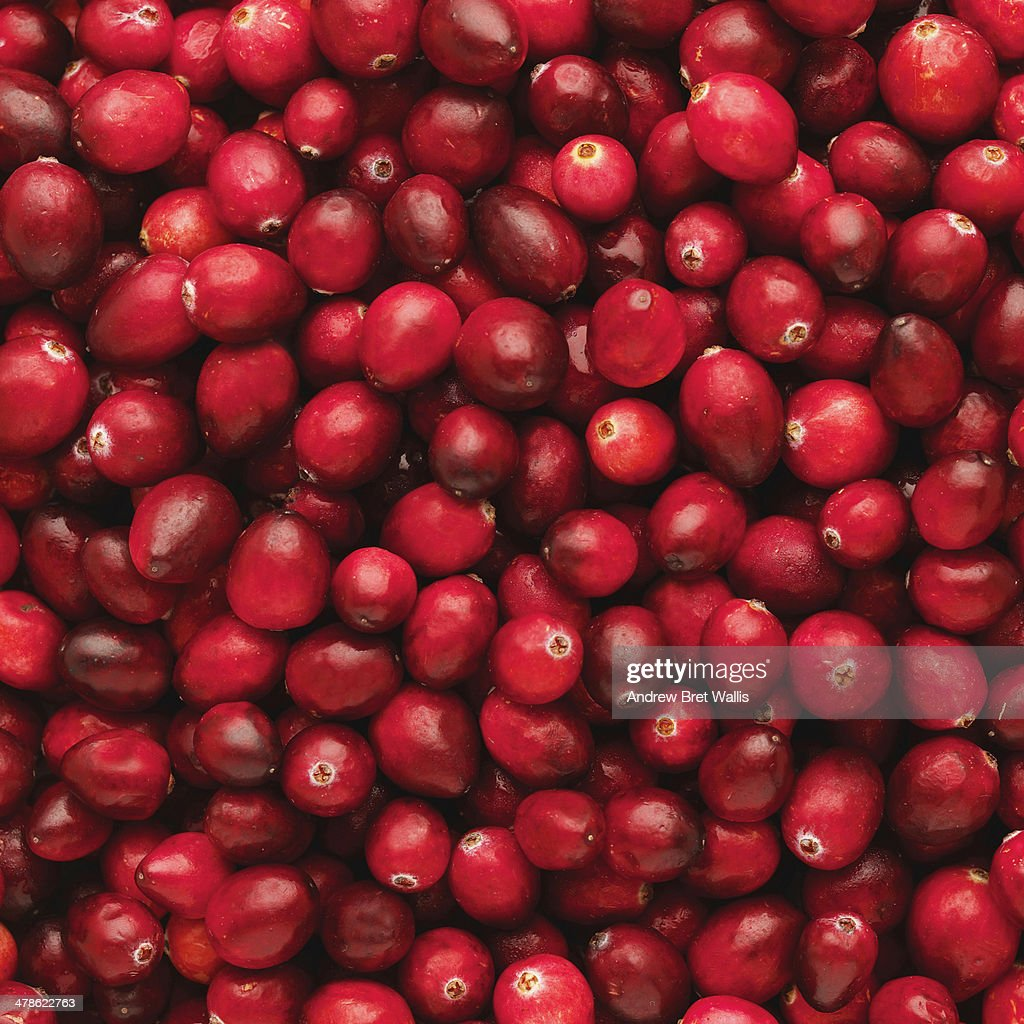 Close-up of cranberries : Photo