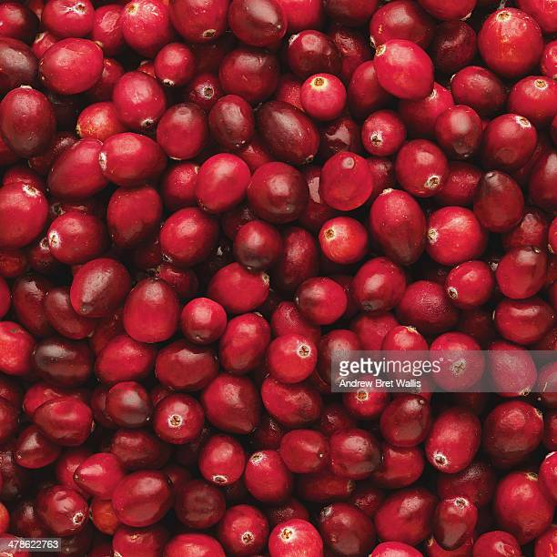 Close-up of cranberries