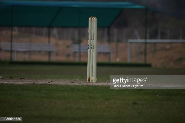 close-up of cricket court on field - wicket stock pictures, royalty-free photos & images