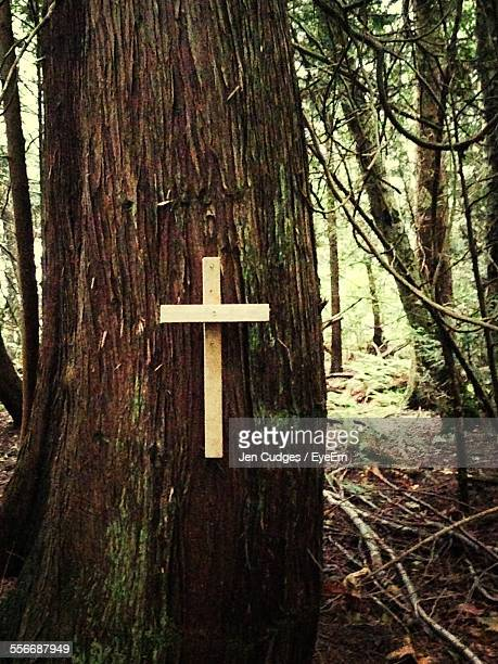 close-up of cross on tree trunk - nazar stock photos and pictures