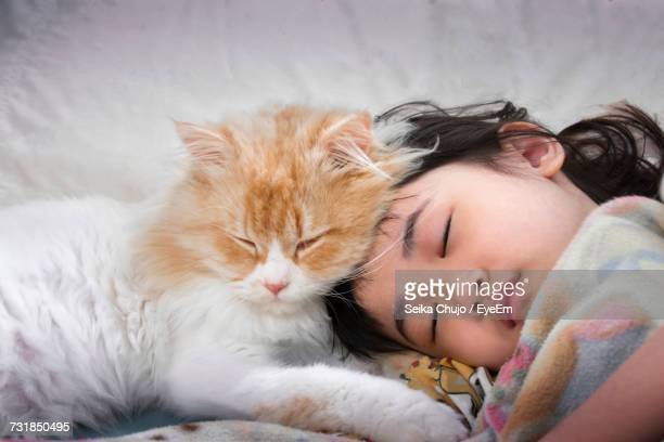 close-up of cute girl sleeping on bed at home - persian girl stock photos and pictures