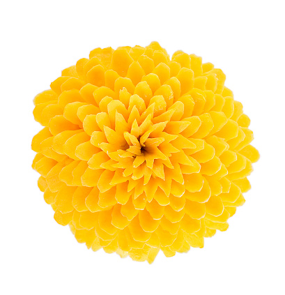 Close-Up Of Dahlia Flower Against White Background - gettyimageskorea
