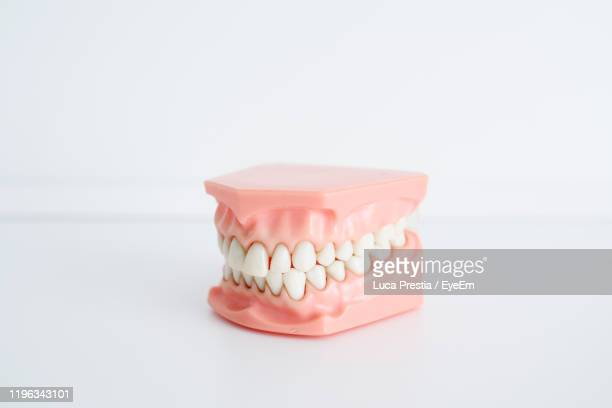 close-up of dentures against white background - dentures stock pictures, royalty-free photos & images