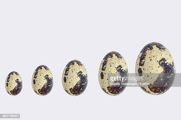 Close-Up Of Different Size Quail Eggs On White Background