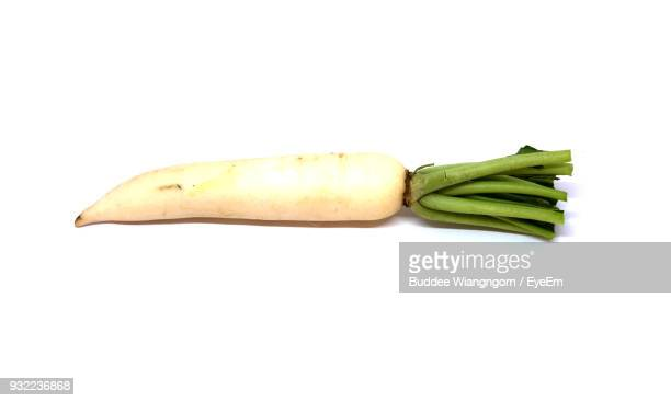 close-up of dikon radish against white background - dikon radish stock photos and pictures