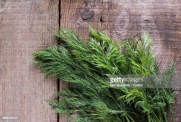 Close-Up Of Dill On Wooden Table