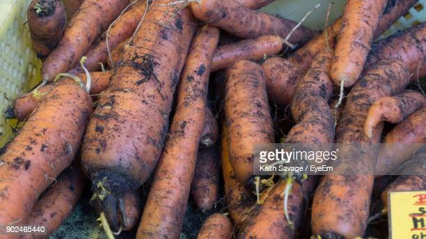 close-up of dirty carrots in market for sale - keith savage stock-fotos und bilder