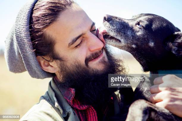 close-up of dog licking mans face during sunny day - one animal stock pictures, royalty-free photos & images