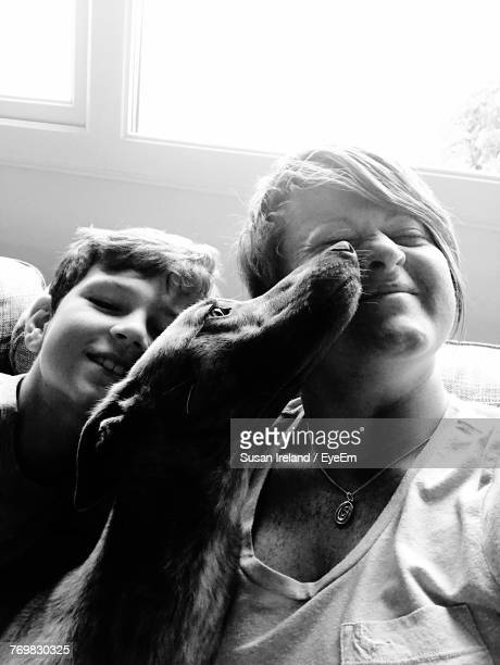 Close-Up Of Dog Licking Woman Nose By Son At Home