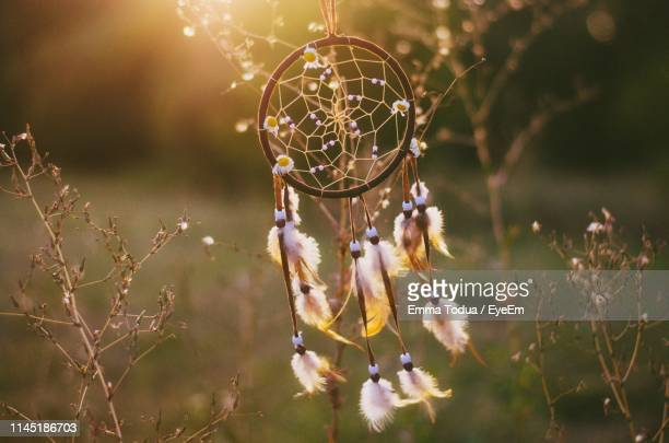 close-up of dreamcatcher hanging on plant - dreamcatcher stock pictures, royalty-free photos & images