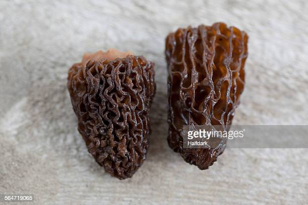 Close-up of dried Morchella mushrooms on table