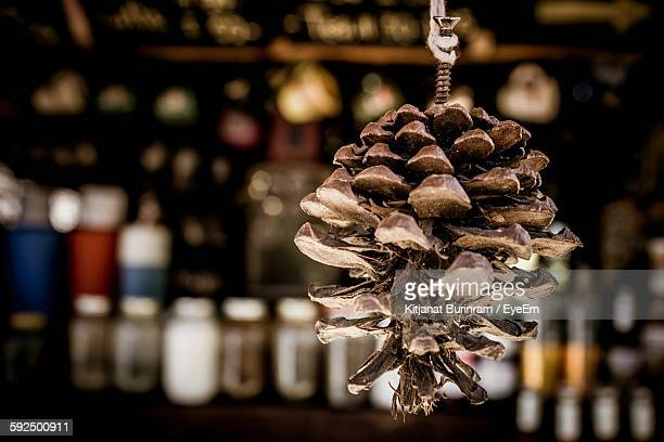 Close-Up Of Dried Pine Cone In Shop