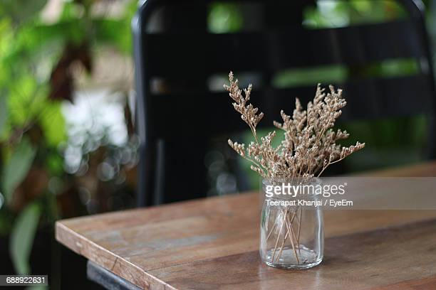 close-up of dry plant in glass jar on table - 後ろボケ ストックフォトと画像