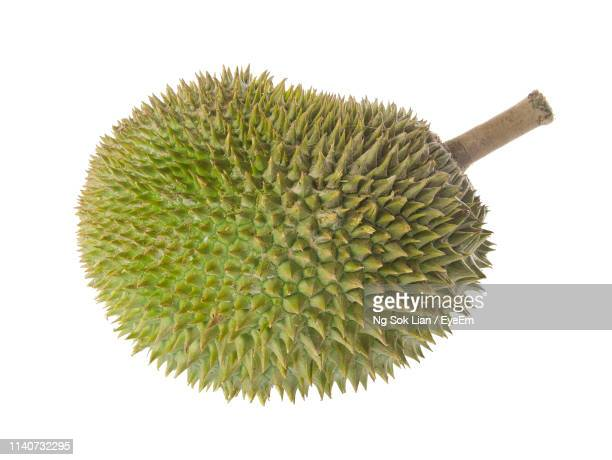 close-up of durian fruit against white background - durian stock pictures, royalty-free photos & images