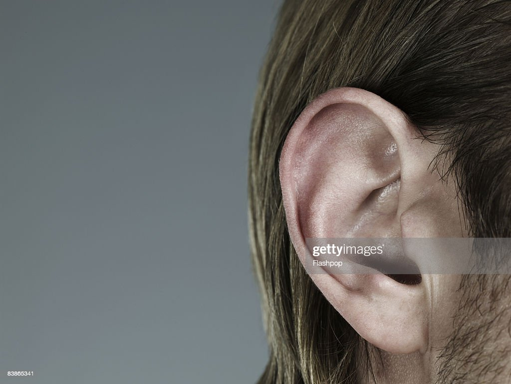 Close-up of ear : Stock Photo
