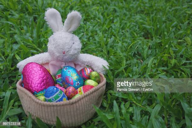 Close-Up Of Easter Bunny With Eggs In Basket On Grassy Field