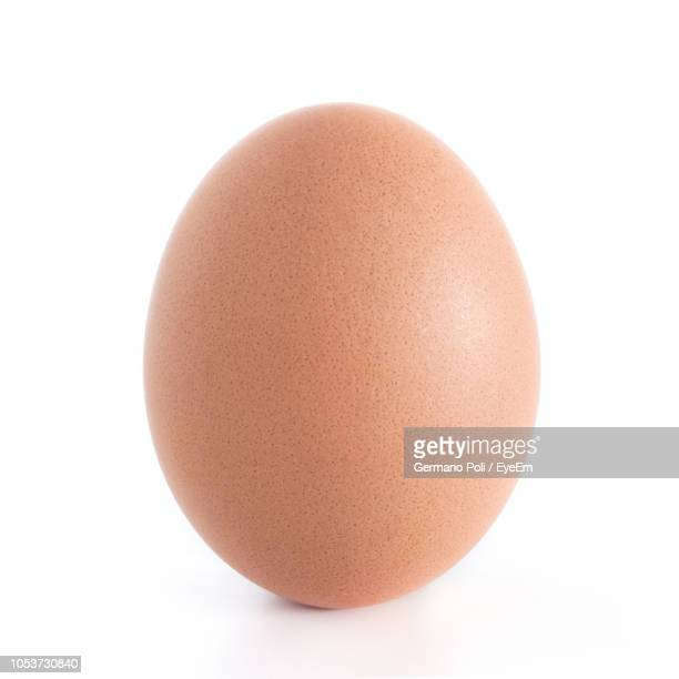 close-up of egg against white background - marrone foto e immagini stock