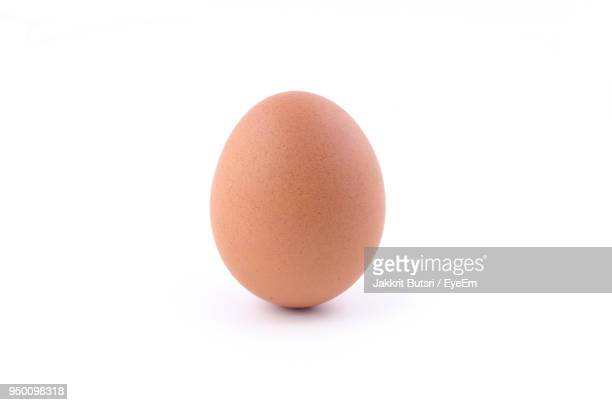 close-up of egg against white background - ei stock-fotos und bilder