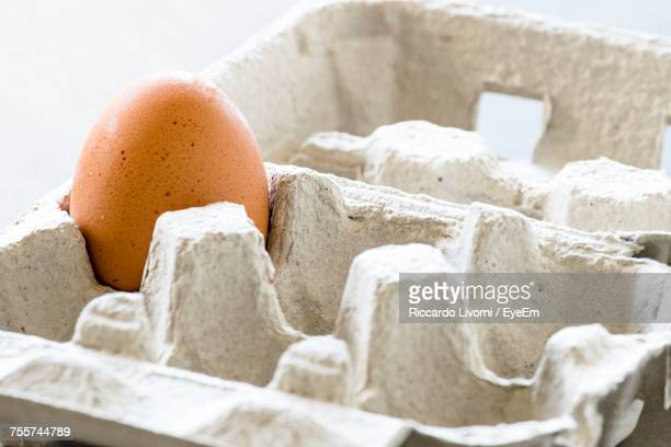 Close-Up Of Egg In Carton