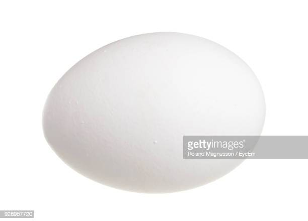 close-up of egg over white background - oeuf photos et images de collection