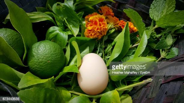 close-up of egg with lemons and mint leaves in wicker basket - palm harbor stock-fotos und bilder