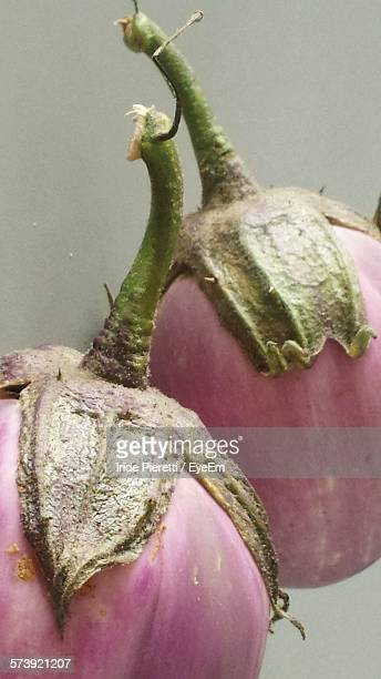 close-up of eggplants - massa stock pictures, royalty-free photos & images