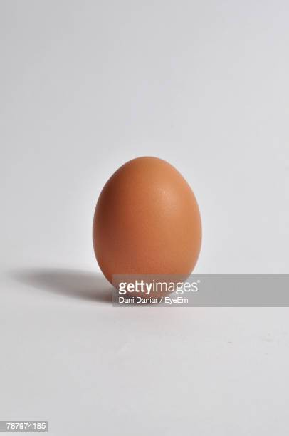close-up of eggs against white background - animal egg stock pictures, royalty-free photos & images