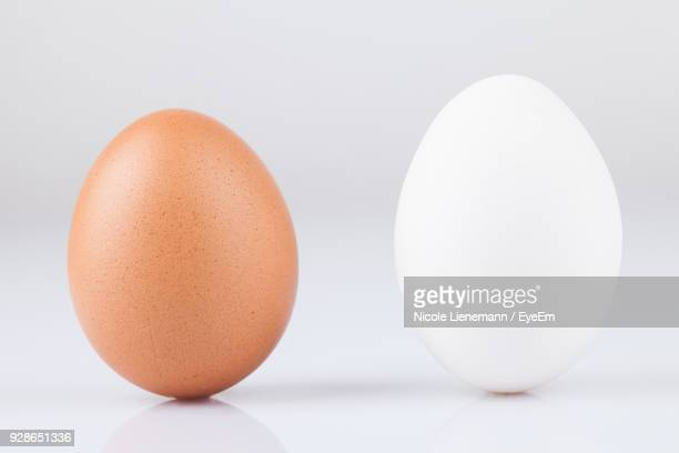 close-up of eggs against white background - brown stock pictures, royalty-free photos & images