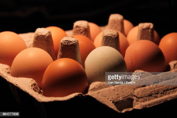 Close-Up Of Eggs In Carton Against Black Background