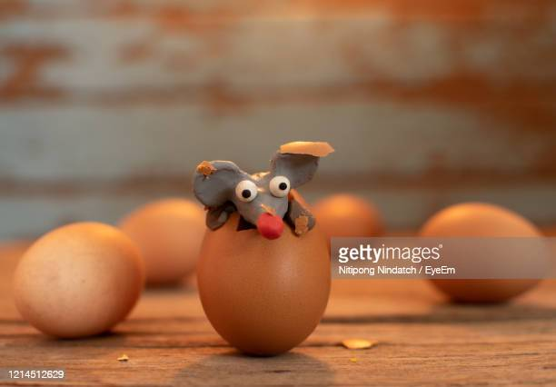 close-up of eggs on table - brown cartoon characters stock pictures, royalty-free photos & images